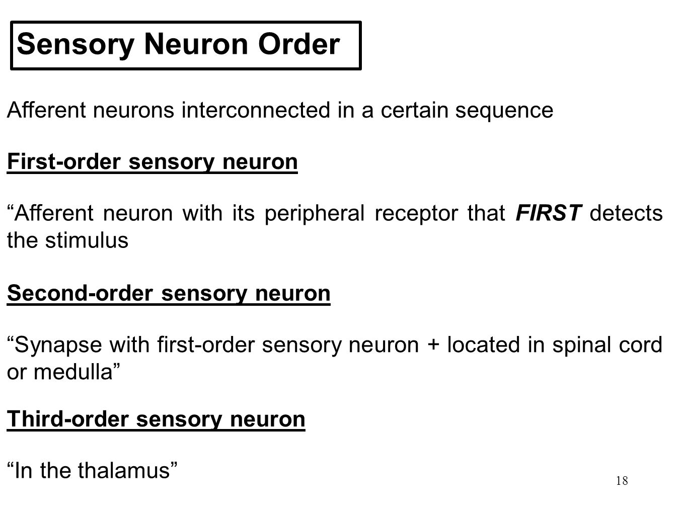 """18 Sensory Neuron Order Afferent neurons interconnected in a certain sequence First-order sensory neuron """"Afferent neuron with its peripheral receptor"""