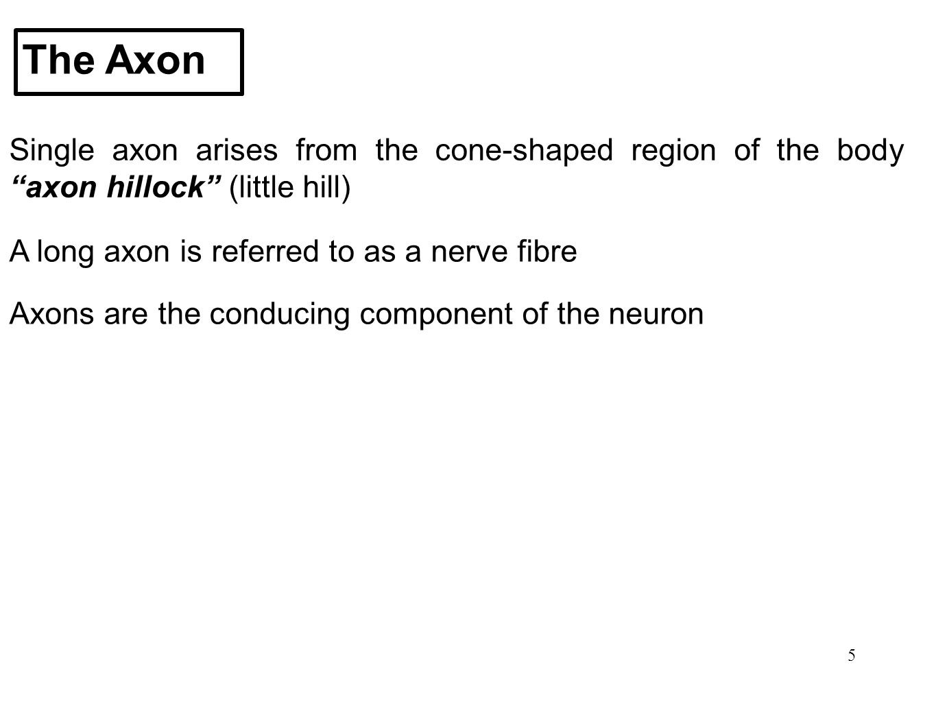 """5 The Axon Single axon arises from the cone-shaped region of the body """"axon hillock"""" (little hill) A long axon is referred to as a nerve fibre Axons a"""