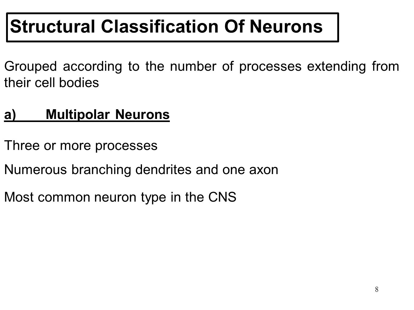 8 Structural Classification Of Neurons Grouped according to the number of processes extending from their cell bodies a)Multipolar Neurons Three or mor