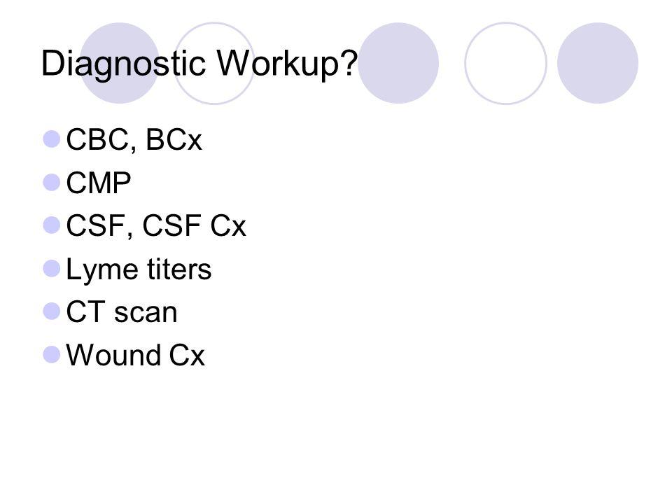 Diagnostic Workup CBC, BCx CMP CSF, CSF Cx Lyme titers CT scan Wound Cx