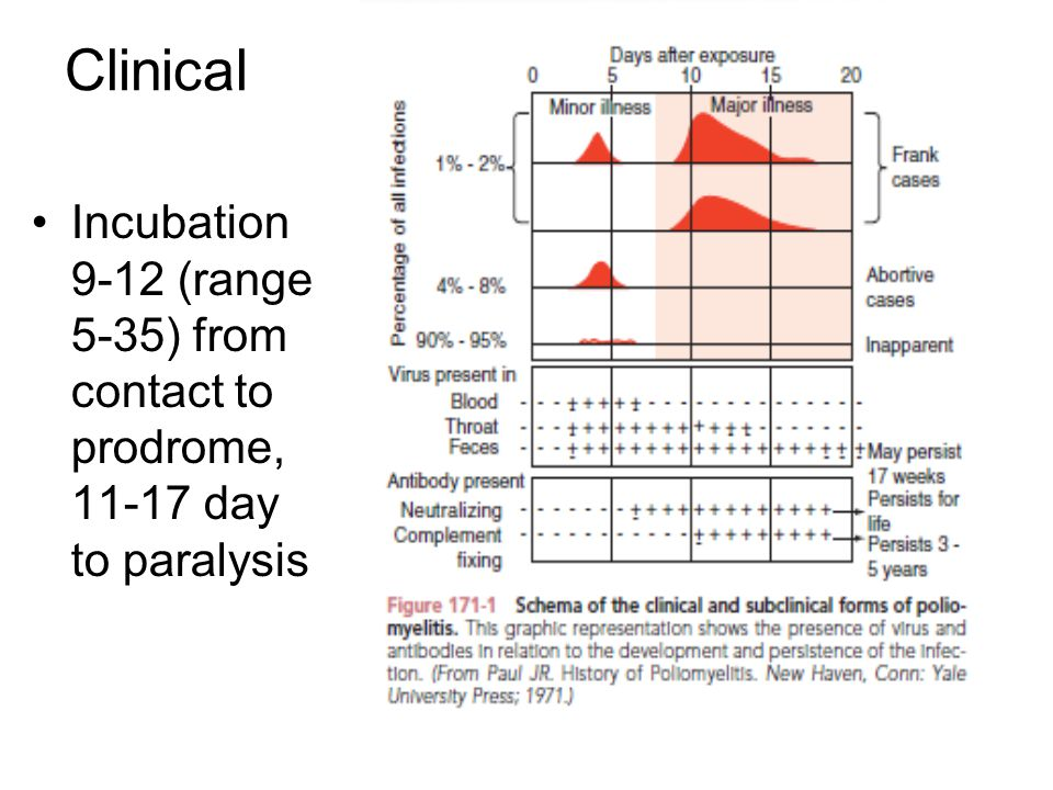Clinical Incubation 9-12 (range 5-35) from contact to prodrome, 11-17 day to paralysis