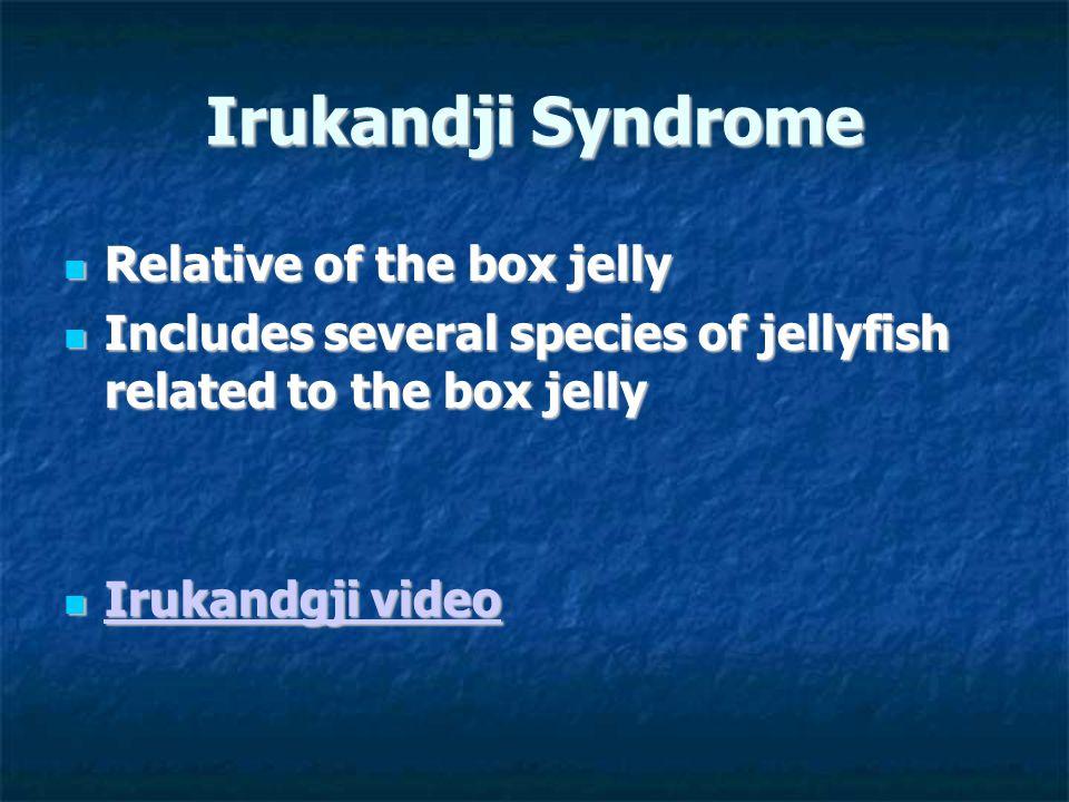 Irukandji Syndrome Relative of the box jelly Relative of the box jelly Includes several species of jellyfish related to the box jelly Includes several species of jellyfish related to the box jelly Irukandgji video Irukandgji video Irukandgji video Irukandgji video