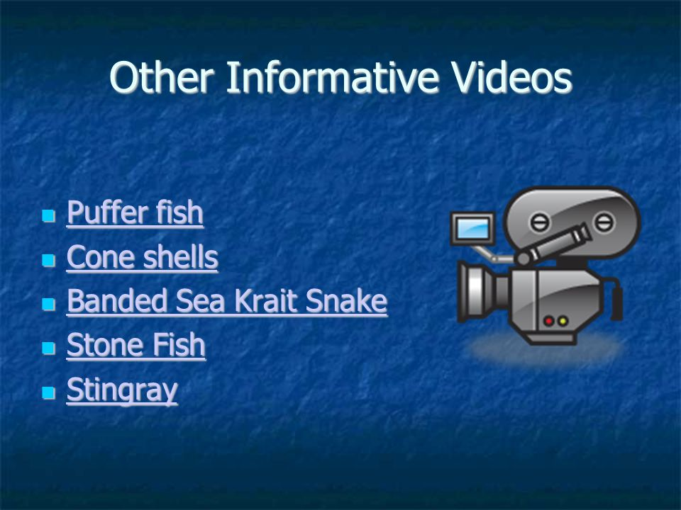 Other Informative Videos Puffer fish Puffer fish Puffer fish Puffer fish Cone shells Cone shells Cone shells Cone shells Banded Sea Krait Snake Banded Sea Krait Snake Banded Sea Krait Snake Banded Sea Krait Snake Stone Fish Stone Fish Stone Fish Stone Fish Stingray Stingray Stingray