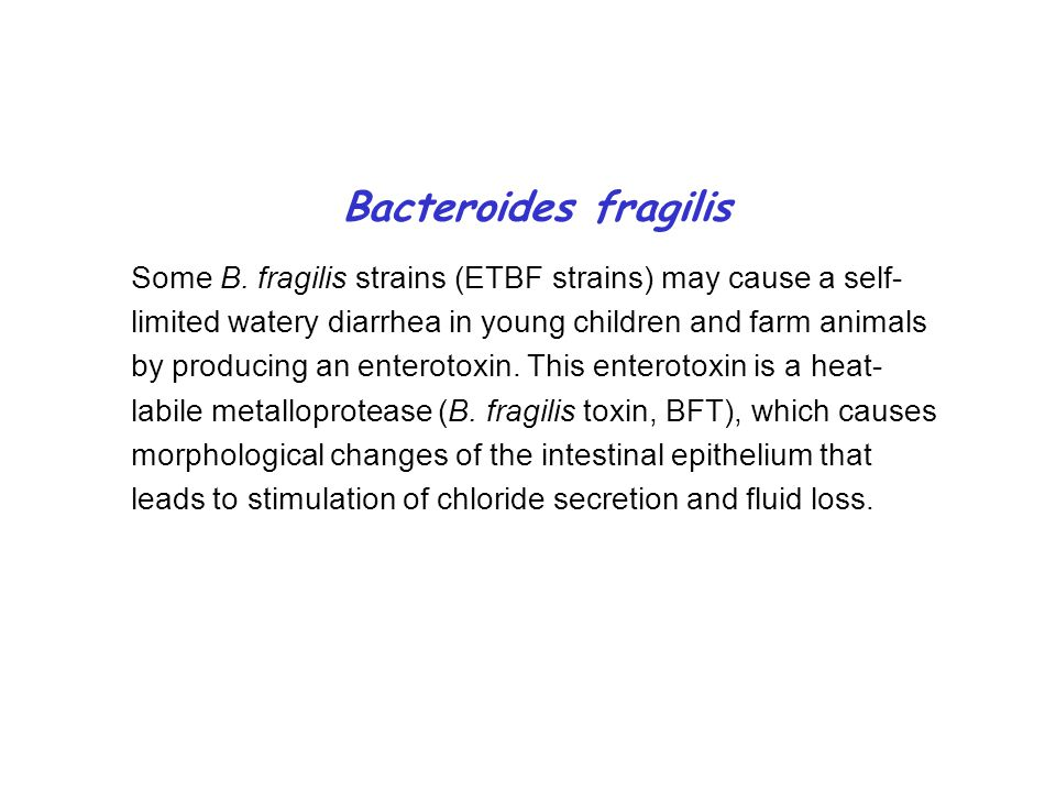Bacteroides fragilis Some B.