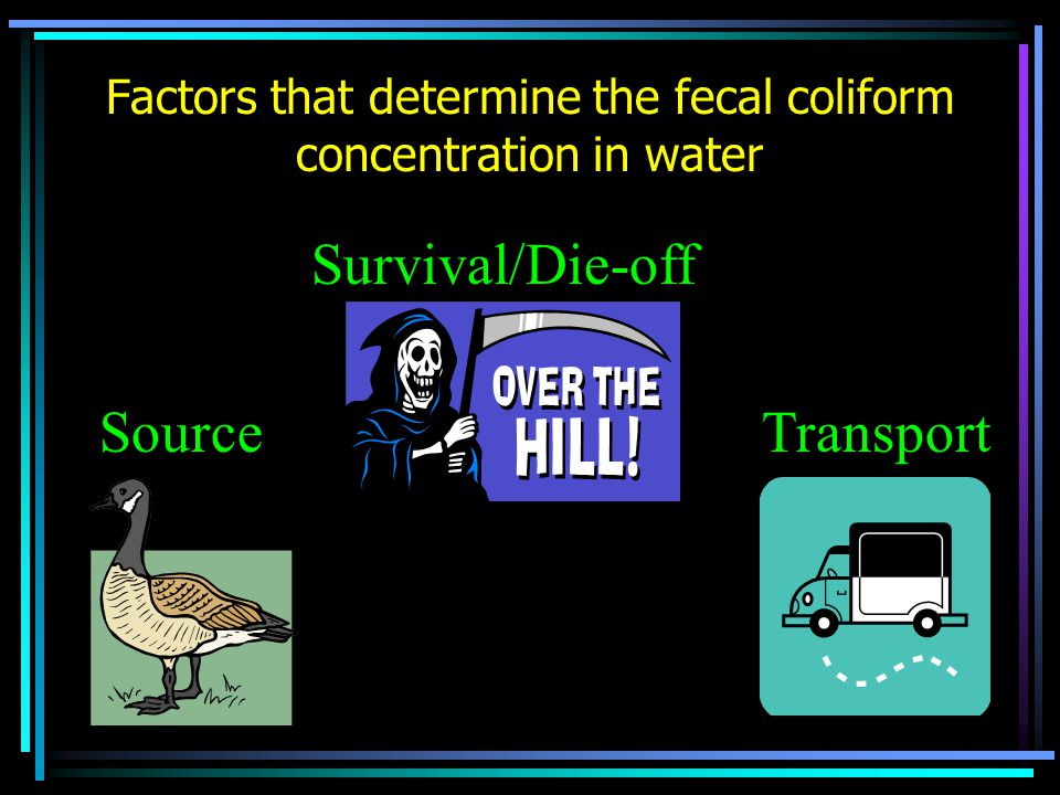 Factors that determine the fecal coliform concentration in water Transport Survival/Die-off Source