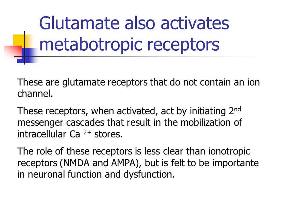 Glutamate receptors are strategically localized in the synapse
