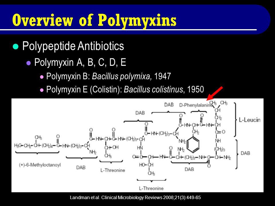 Landman et al. Clinical Microbiology Reviews 2008;21(3):449-65 Overview of Polymyxins Polypeptide Antibiotics Polymyxin A, B, C, D, E Polymyxin B: Bac