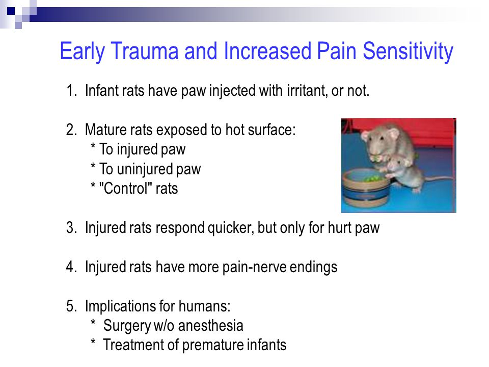 1.Infant rats have paw injected with irritant, or not.