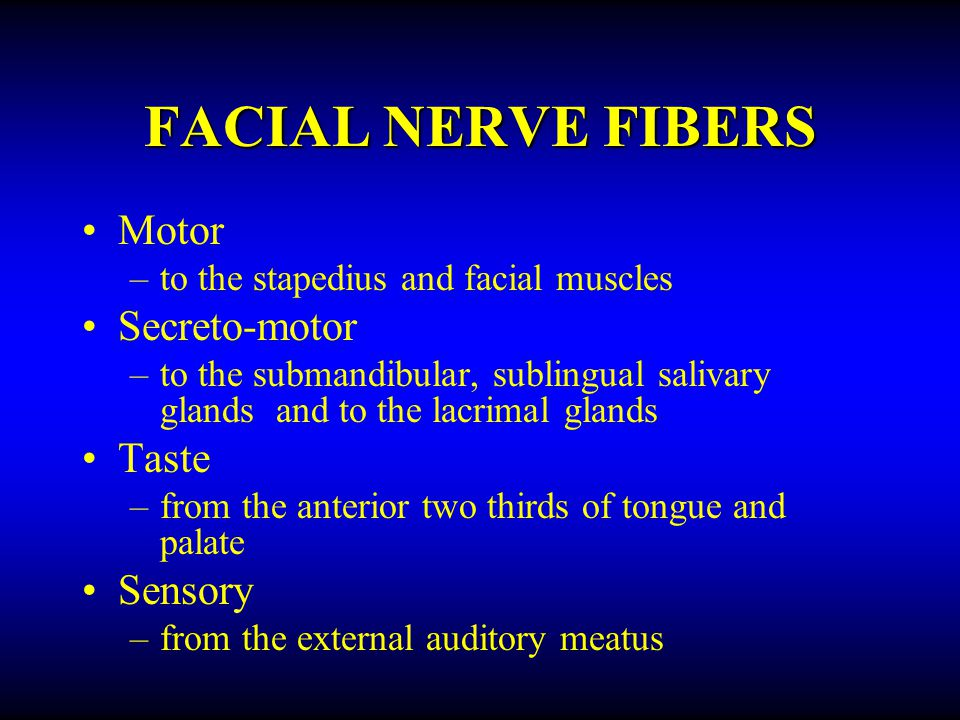 FACIAL NERVE FIBERS Motor –to stapedius, and facial muscles Secreto-motor –to the submandibular, sublingual, and lacrimal glands Taste –from the anterior two thirds of tongue and palate Sensory –from the external auditory meatus