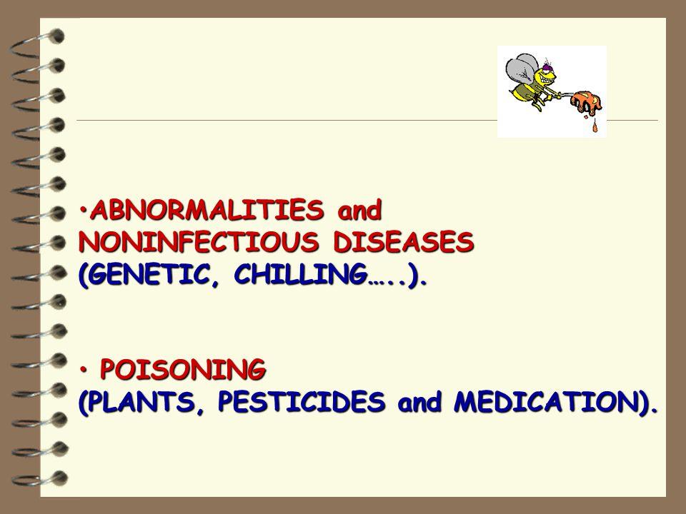 Honeybee Brood Diseases and Parasites (Israel 2012) AMERICAN FOULBROOD ( Bacterial - Paenibcillus larvae).AMERICAN FOULBROOD ( Bacterial - Paenibcillus larvae).