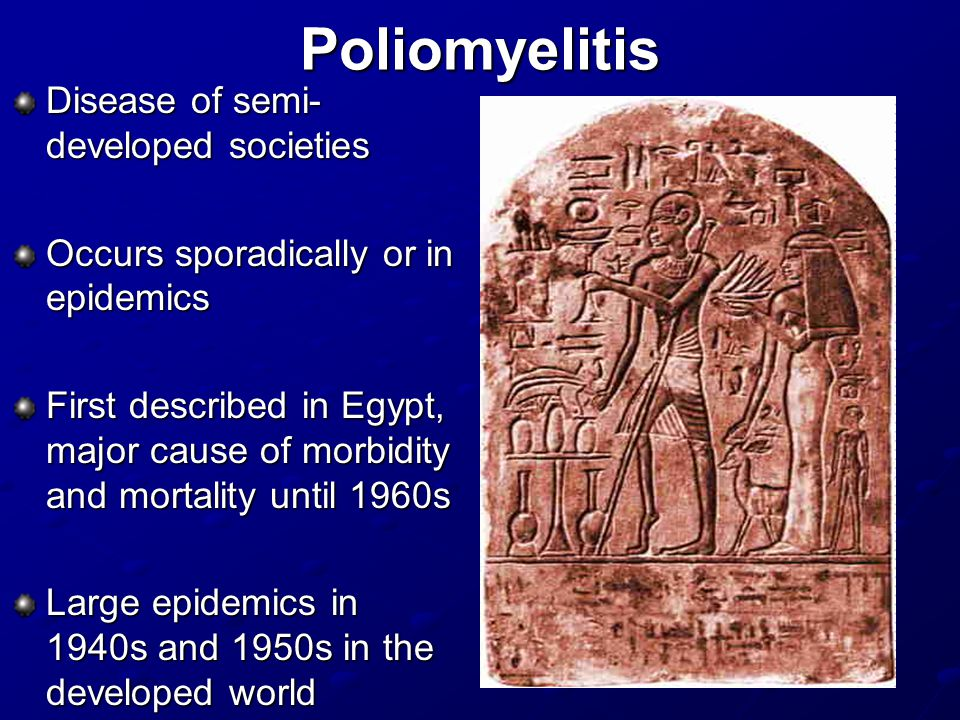 Poliomyelitis Disease of semi- developed societies Occurs sporadically or in epidemics First described in Egypt, major cause of morbidity and mortality until 1960s Large epidemics in 1940s and 1950s in the developed world