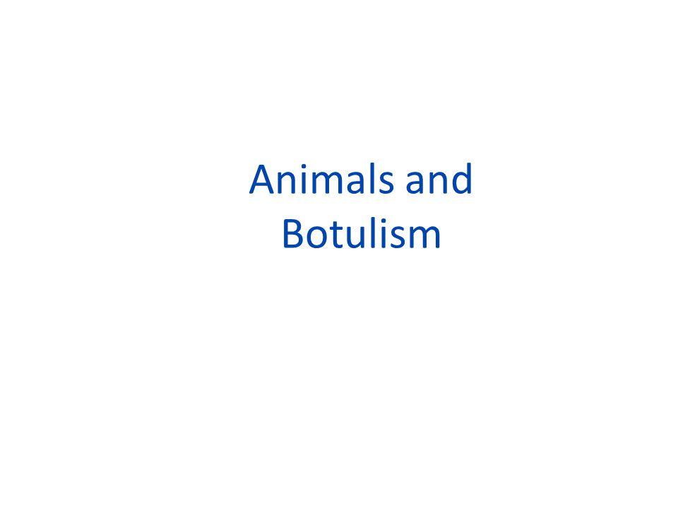 Animals and Botulism
