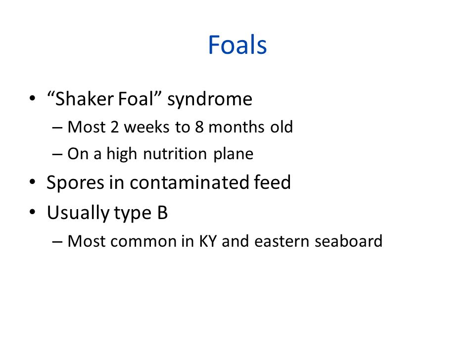 Foals Shaker Foal syndrome – Most 2 weeks to 8 months old – On a high nutrition plane Spores in contaminated feed Usually type B – Most common in KY and eastern seaboard
