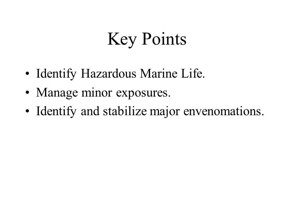 Box Jellyfish and Man-of-War Box Jellyfish may be most potent marine envenomations.