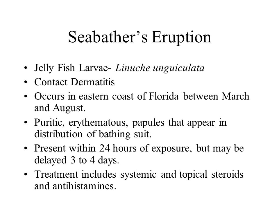 Seabather's Eruption Jelly Fish Larvae- Linuche unguiculata Contact Dermatitis Occurs in eastern coast of Florida between March and August. Puritic, e