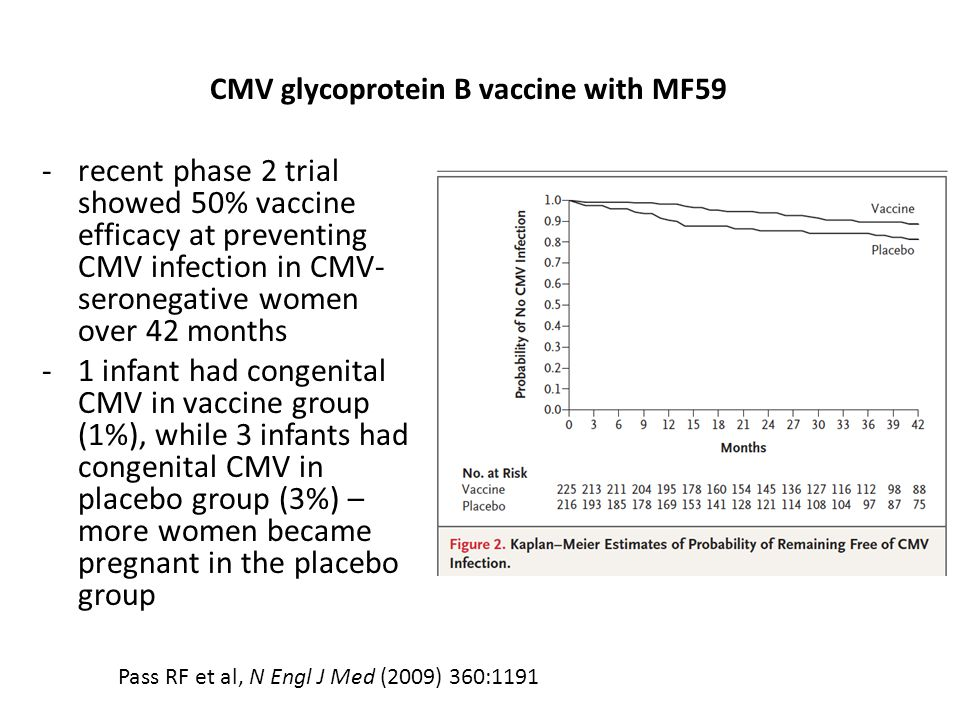 -recent phase 2 trial showed 50% vaccine efficacy at preventing CMV infection in CMV- seronegative women over 42 months -1 infant had congenital CMV i