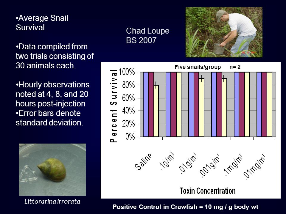 Average Snail Survival Data compiled from two trials consisting of 30 animals each.