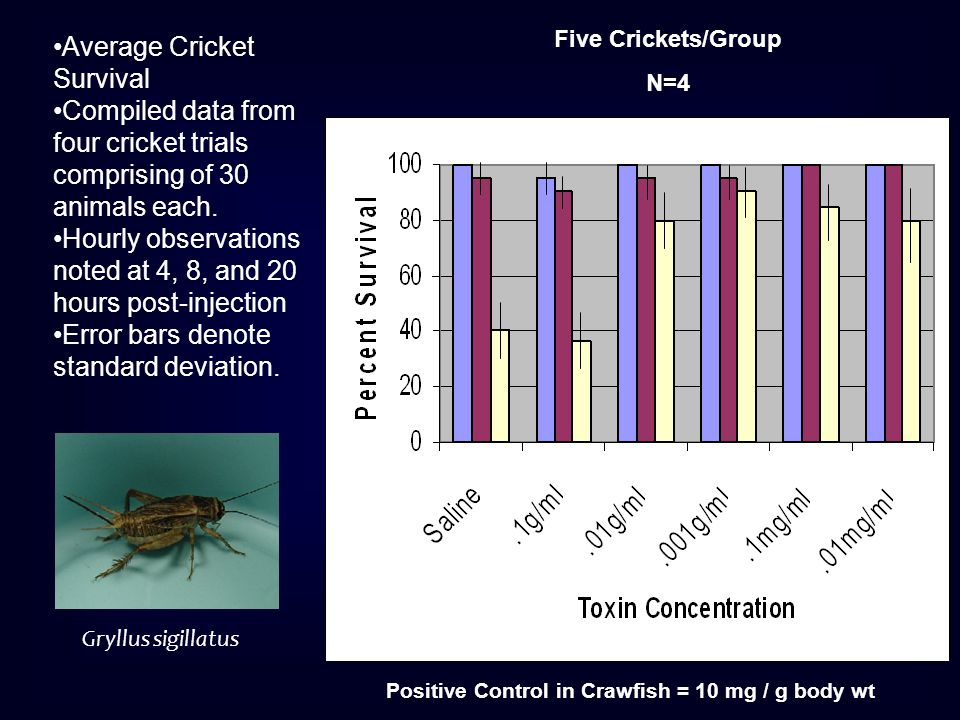 Average Cricket Survival Compiled data from four cricket trials comprising of 30 animals each. Hourly observations noted at 4, 8, and 20 hours post-in