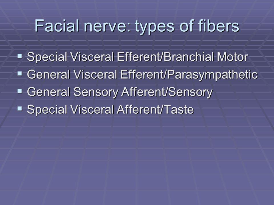 Facial nerve: types of fibers  Special Visceral Efferent/Branchial Motor  General Visceral Efferent/Parasympathetic  General Sensory Afferent/Sensory  Special Visceral Afferent/Taste