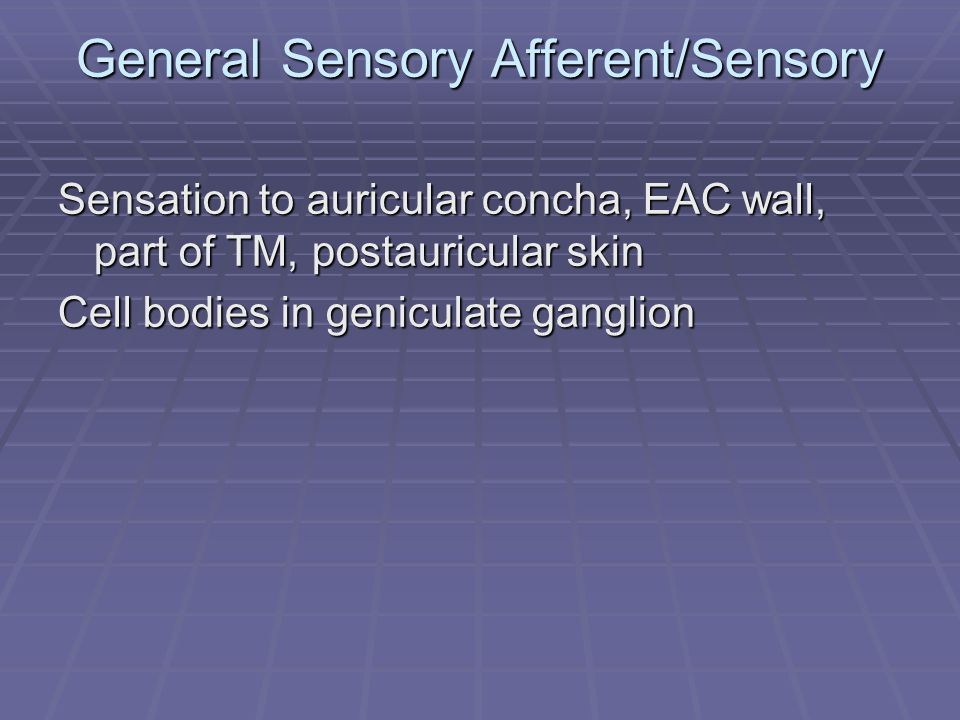 General Sensory Afferent/Sensory Sensation to auricular concha, EAC wall, part of TM, postauricular skin Cell bodies in geniculate ganglion