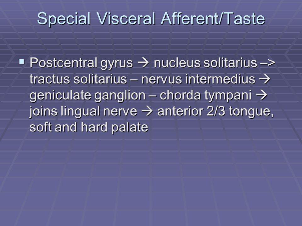 Special Visceral Afferent/Taste  Postcentral gyrus  nucleus solitarius –> tractus solitarius – nervus intermedius  geniculate ganglion – chorda tympani  joins lingual nerve  anterior 2/3 tongue, soft and hard palate