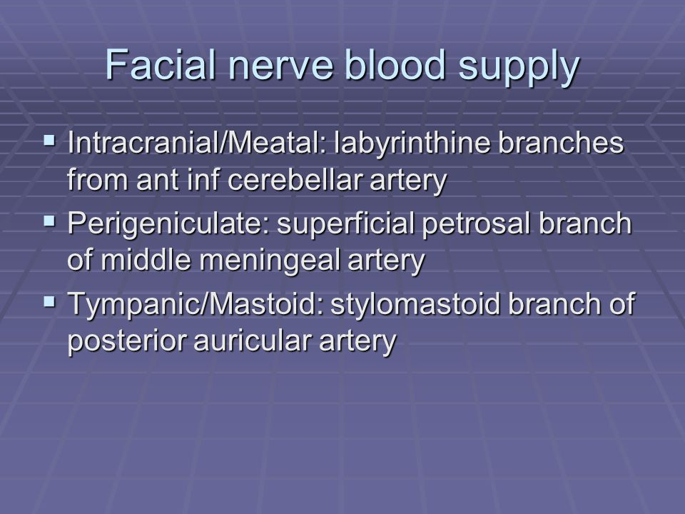 Facial nerve blood supply  Intracranial/Meatal: labyrinthine branches from ant inf cerebellar artery  Perigeniculate: superficial petrosal branch of middle meningeal artery  Tympanic/Mastoid: stylomastoid branch of posterior auricular artery