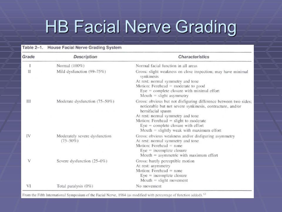 HB Facial Nerve Grading