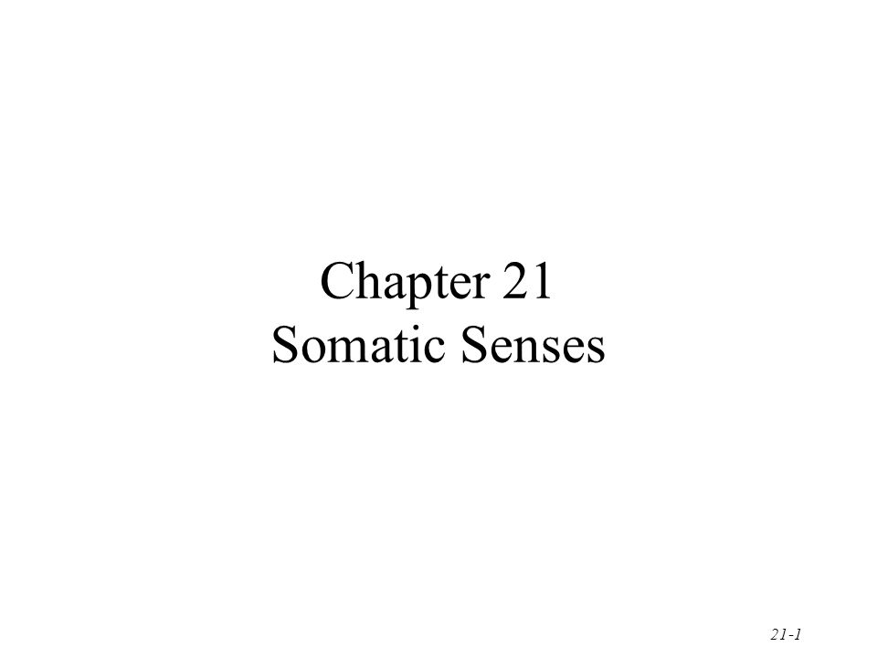 21-1 Chapter 21 Somatic Senses