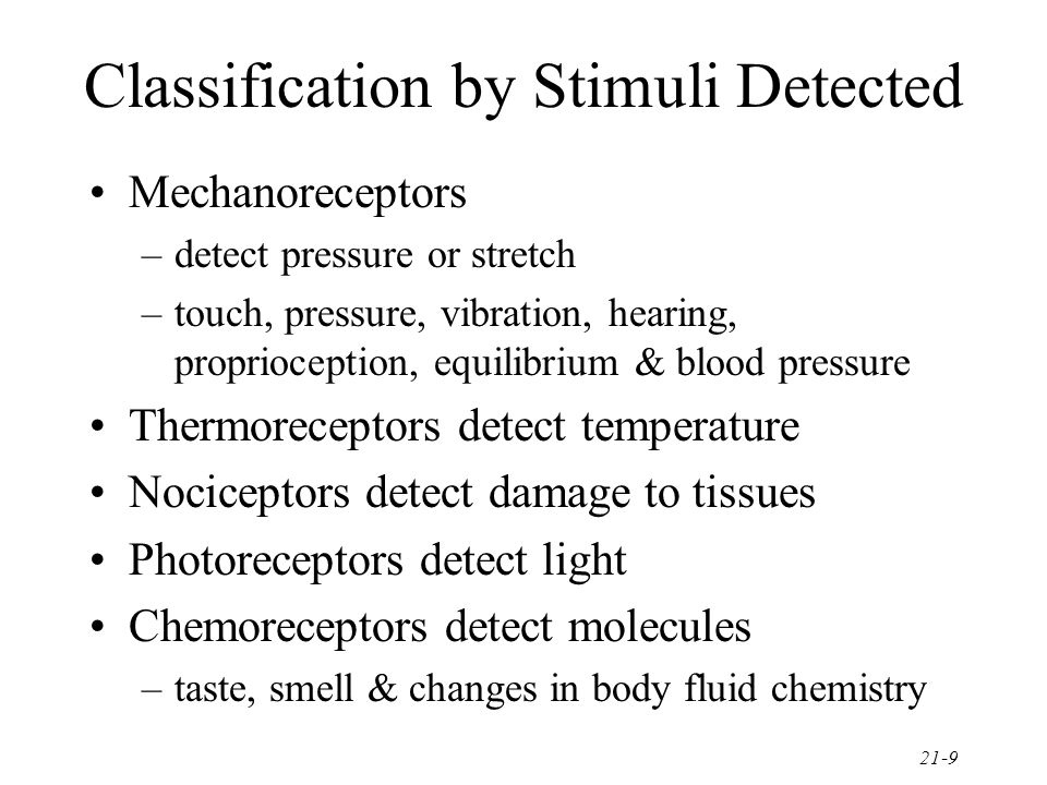 21-9 Classification by Stimuli Detected Mechanoreceptors –detect pressure or stretch –touch, pressure, vibration, hearing, proprioception, equilibrium