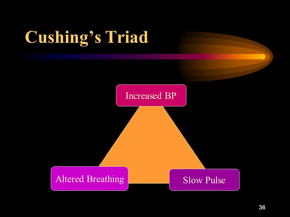 36 Cushing's Triad Increased BP Slow Pulse Altered Breathing