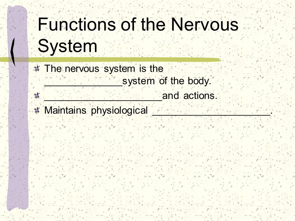 Functions of the Nervous System The nervous system is the ______________system of the body.