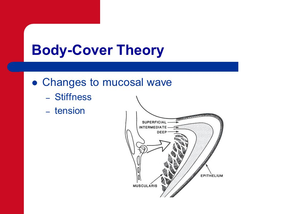 Body-Cover Theory Changes to mucosal wave – Stiffness – tension