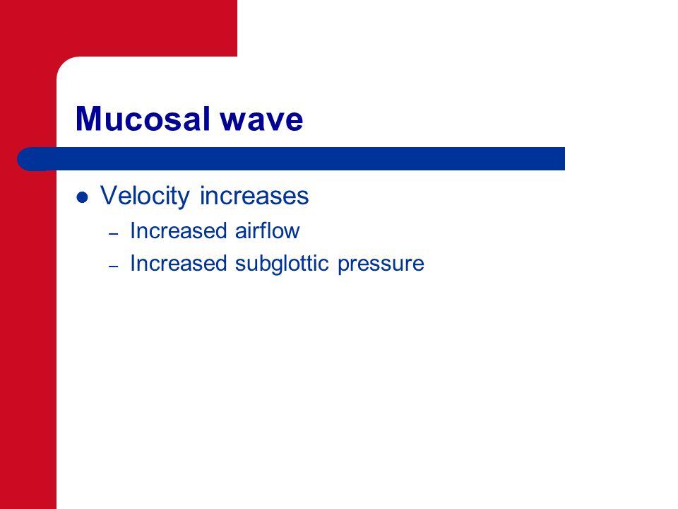 Mucosal wave Velocity increases – Increased airflow – Increased subglottic pressure