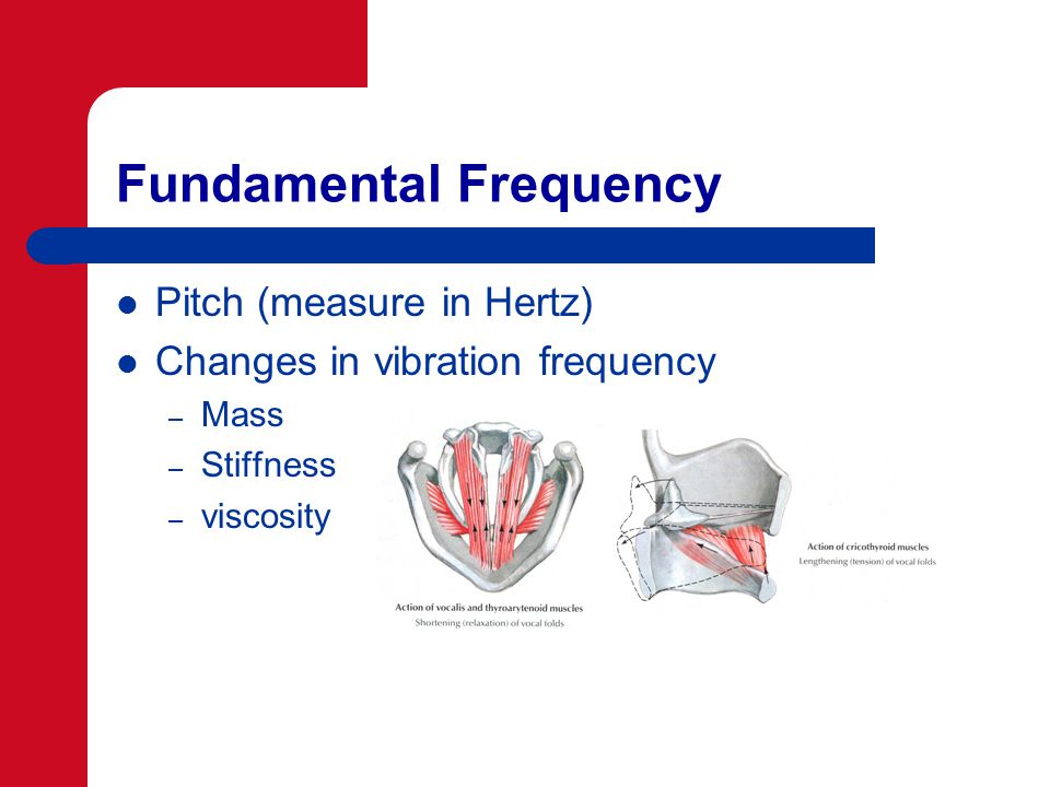 Fundamental Frequency Pitch (measure in Hertz) Changes in vibration frequency – Mass – Stiffness – viscosity