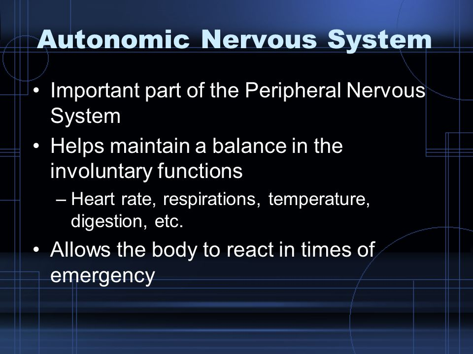 Autonomic Nervous System Important part of the Peripheral Nervous System Helps maintain a balance in the involuntary functions –Heart rate, respirations, temperature, digestion, etc.