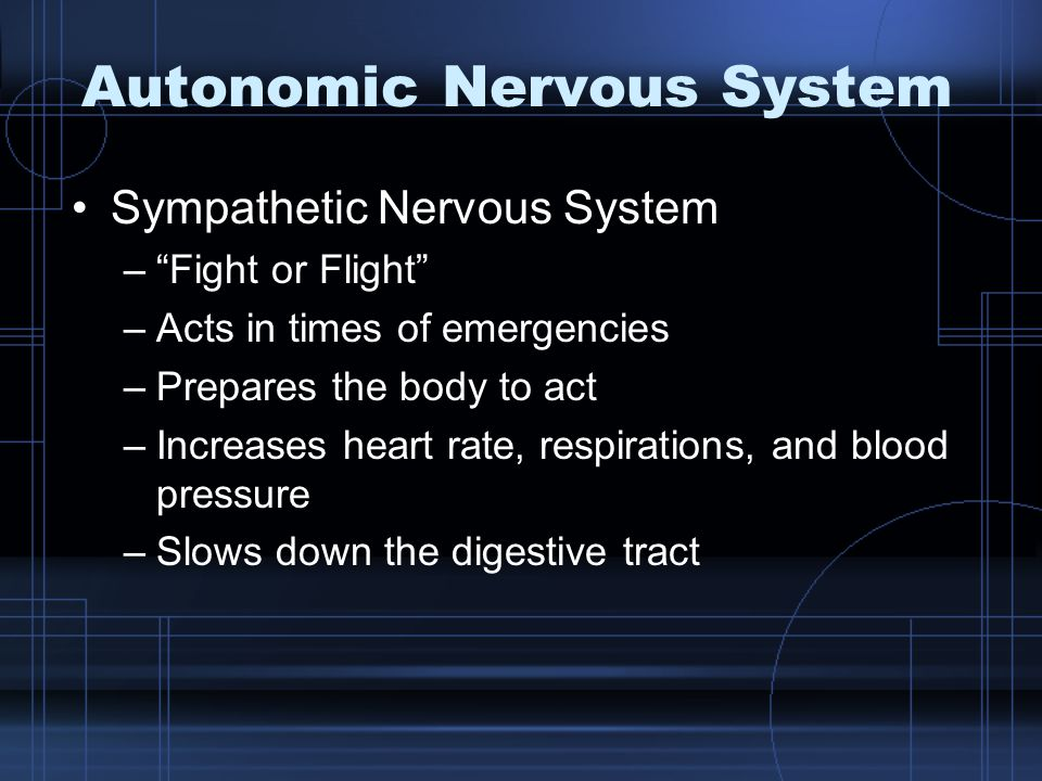 """Autonomic Nervous System Sympathetic Nervous System –""""Fight or Flight"""" –Acts in times of emergencies –Prepares the body to act –Increases heart rate,"""