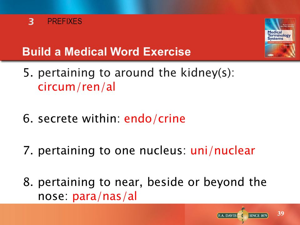 39 5.pertaining to around the kidney(s): circum/ren/al 6.secrete within: endo/crine 7.pertaining to one nucleus: uni/nuclear 8.pertaining to near, beside or beyond the nose: para/nas/al Build a Medical Word Exercise 3 PREFIXES
