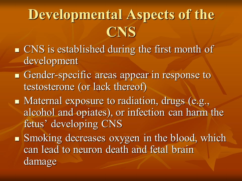 Developmental Aspects of the CNS CNS is established during the first month of development CNS is established during the first month of development Gen