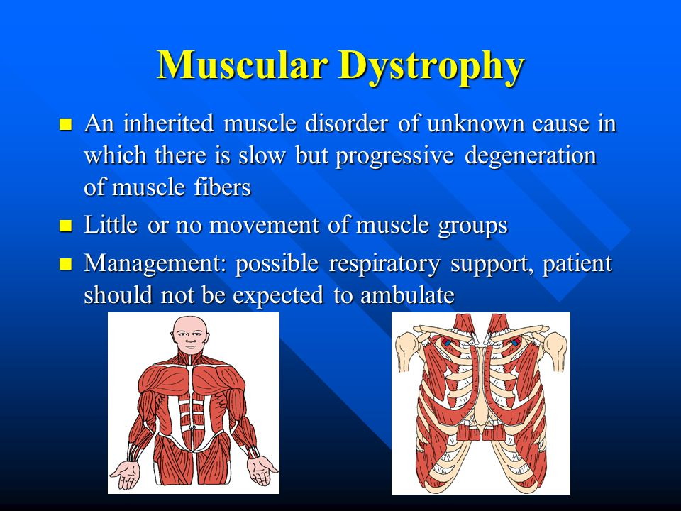 Muscular Dystrophy An inherited muscle disorder of unknown cause in which there is slow but progressive degeneration of muscle fibers An inherited muscle disorder of unknown cause in which there is slow but progressive degeneration of muscle fibers Little or no movement of muscle groups Little or no movement of muscle groups Management: possible respiratory support, patient should not be expected to ambulate Management: possible respiratory support, patient should not be expected to ambulate