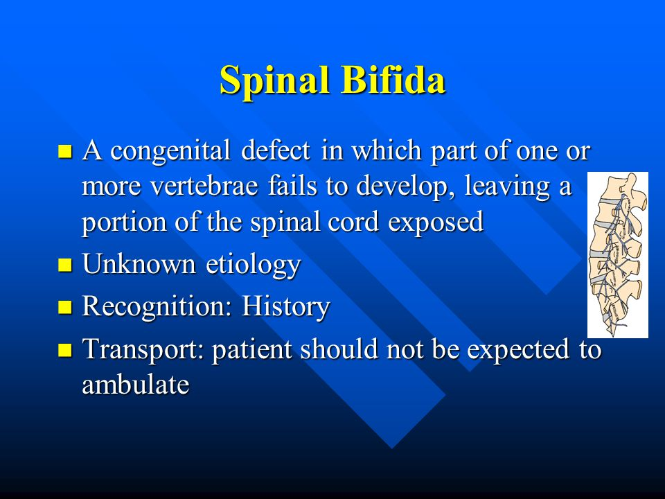 Spinal Bifida A congenital defect in which part of one or more vertebrae fails to develop, leaving a portion of the spinal cord exposed A congenital defect in which part of one or more vertebrae fails to develop, leaving a portion of the spinal cord exposed Unknown etiology Unknown etiology Recognition: History Recognition: History Transport: patient should not be expected to ambulate Transport: patient should not be expected to ambulate
