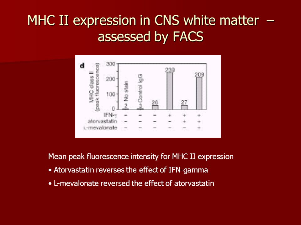MHC II expression in CNS white matter – assessed by FACS Mean peak fluorescence intensity for MHC II expression Atorvastatin reverses the effect of IFN-gamma L-mevalonate reversed the effect of atorvastatin