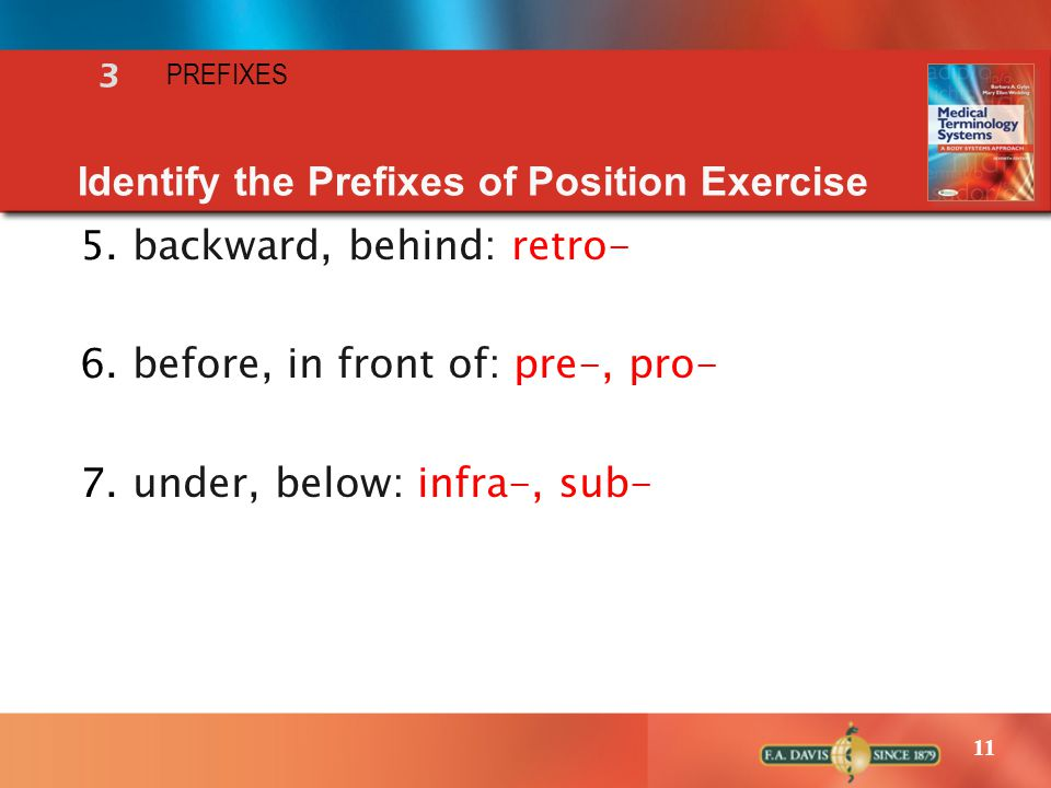 11 Identify the Prefixes of Position Exercise 5.backward, behind: retro- 6.before, in front of: pre-, pro- 7.under, below: infra-, sub- 3 PREFIXES