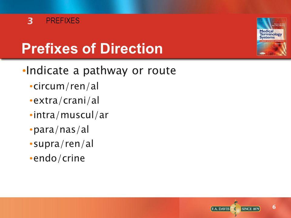 6 Prefixes of Direction Indicate a pathway or route circum/ren/al extra/crani/al intra/muscul/ar para/nas/al supra/ren/al endo/crine 3 PREFIXES