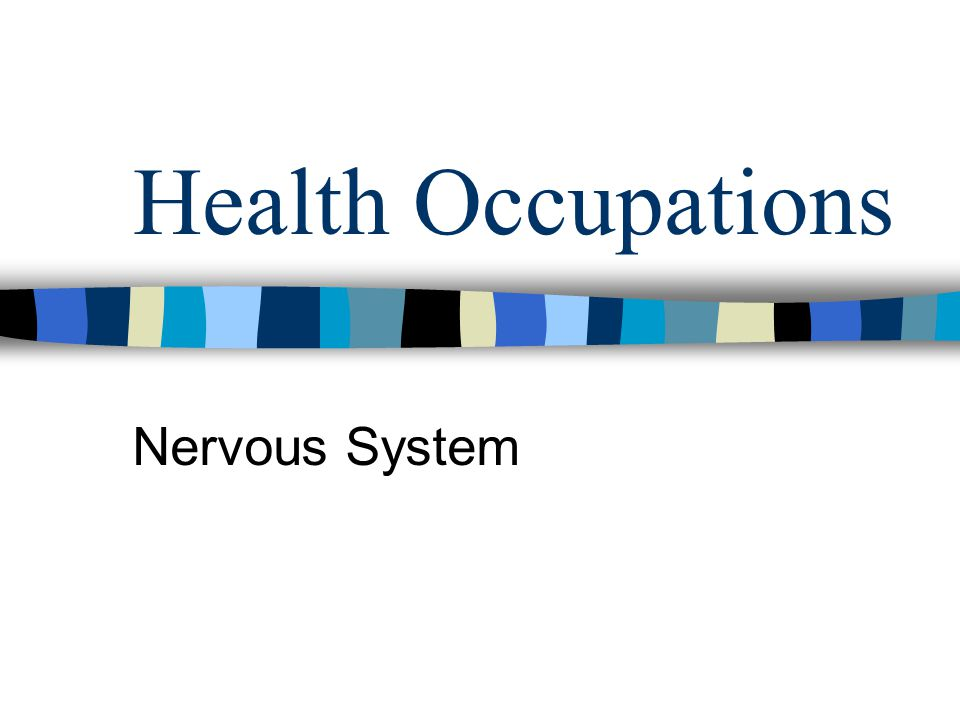 Health Occupations Nervous System