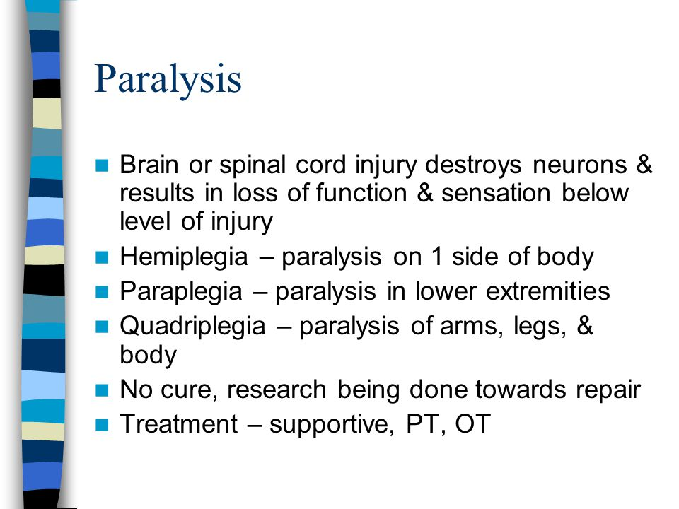 Paralysis Brain or spinal cord injury destroys neurons & results in loss of function & sensation below level of injury Hemiplegia – paralysis on 1 sid