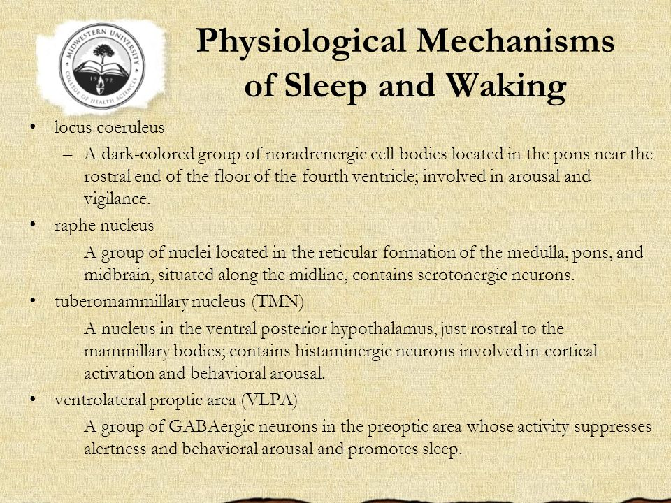 Physiological Mechanisms of Sleep and Waking locus coeruleus –A dark-colored group of noradrenergic cell bodies located in the pons near the rostral end of the floor of the fourth ventricle; involved in arousal and vigilance.