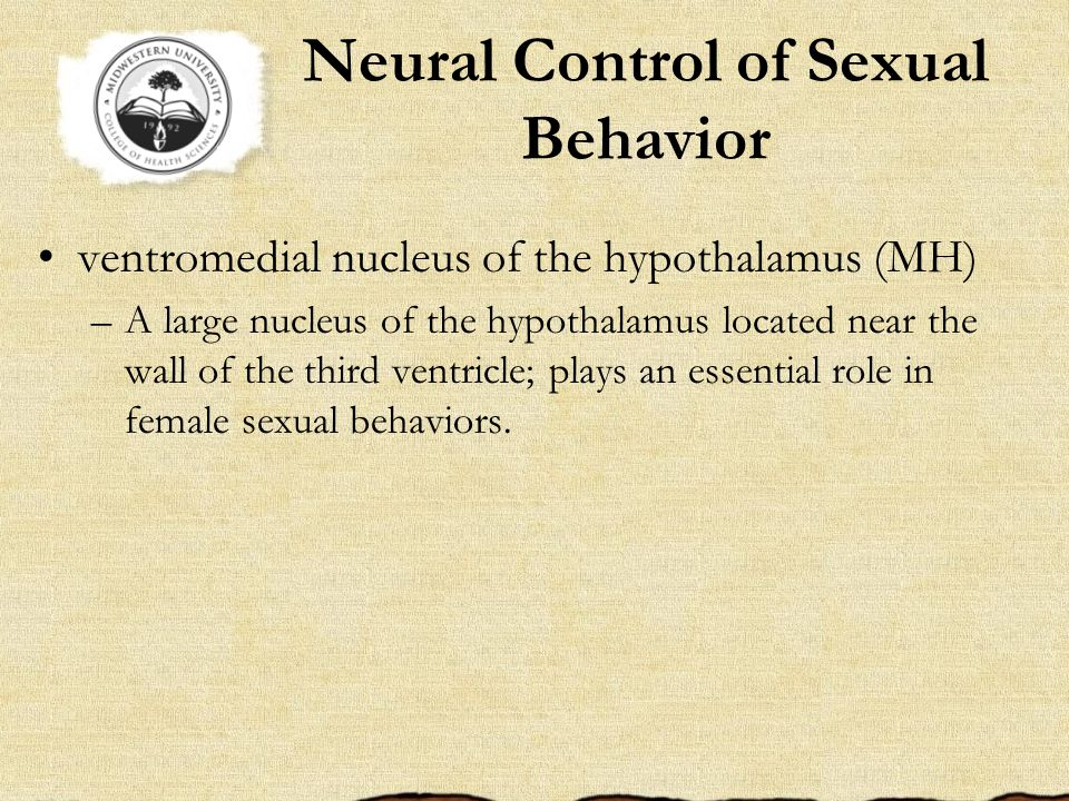 Neural Control of Sexual Behavior ventromedial nucleus of the hypothalamus (MH) –A large nucleus of the hypothalamus located near the wall of the third ventricle; plays an essential role in female sexual behaviors.