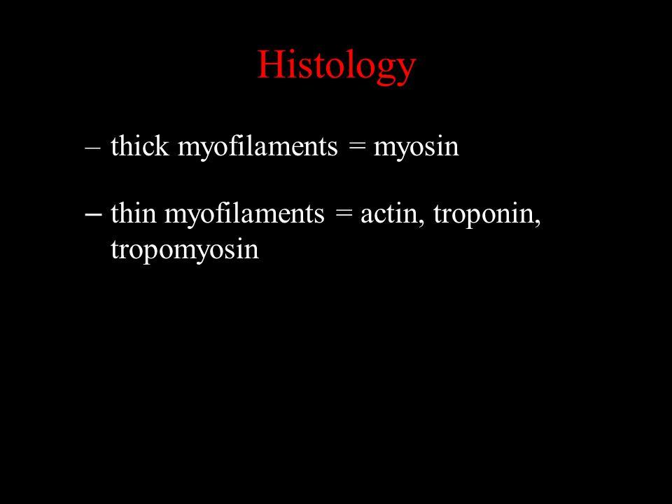 Histology –thick myofilaments = myosin – thin myofilaments = actin, troponin, tropomyosin
