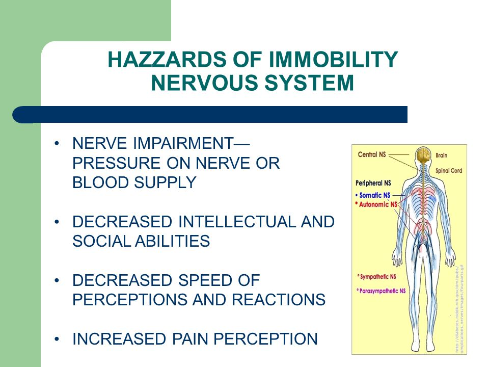 HAZZARDS OF IMMOBILITY NERVOUS SYSTEM NERVE IMPAIRMENT— PRESSURE ON NERVE OR BLOOD SUPPLY DECREASED INTELLECTUAL AND SOCIAL ABILITIES DECREASED SPEED OF PERCEPTIONS AND REACTIONS INCREASED PAIN PERCEPTION