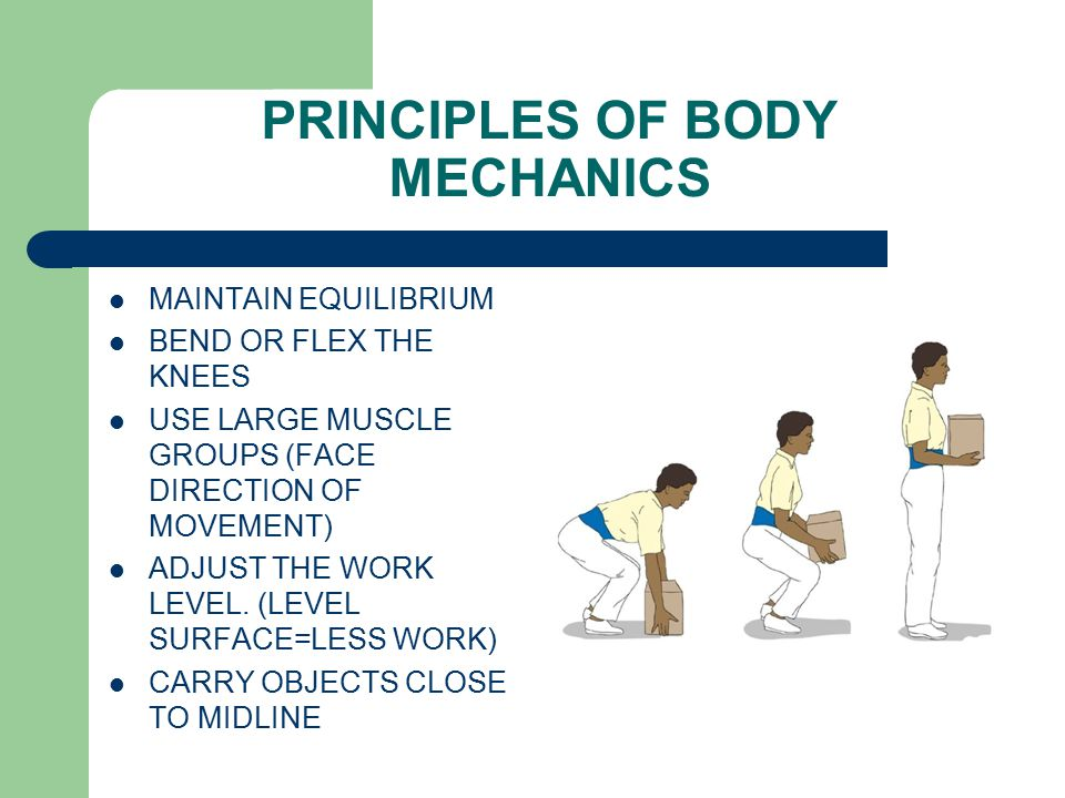 MAINTAIN EQUILIBRIUM BEND OR FLEX THE KNEES USE LARGE MUSCLE GROUPS (FACE DIRECTION OF MOVEMENT) ADJUST THE WORK LEVEL.